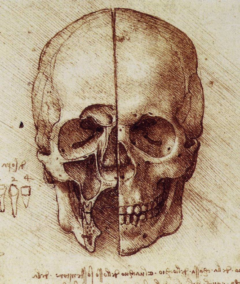 Leonardo Da Vinci Scientific Literacy And The Brick Wall Of Belief